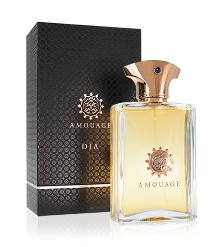 Amouage Dia Pour Homme EDP 100 ml Pre mužov