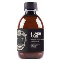 DEAR BEARD Silver Rain Shampoo Anti-Yellow 250ml